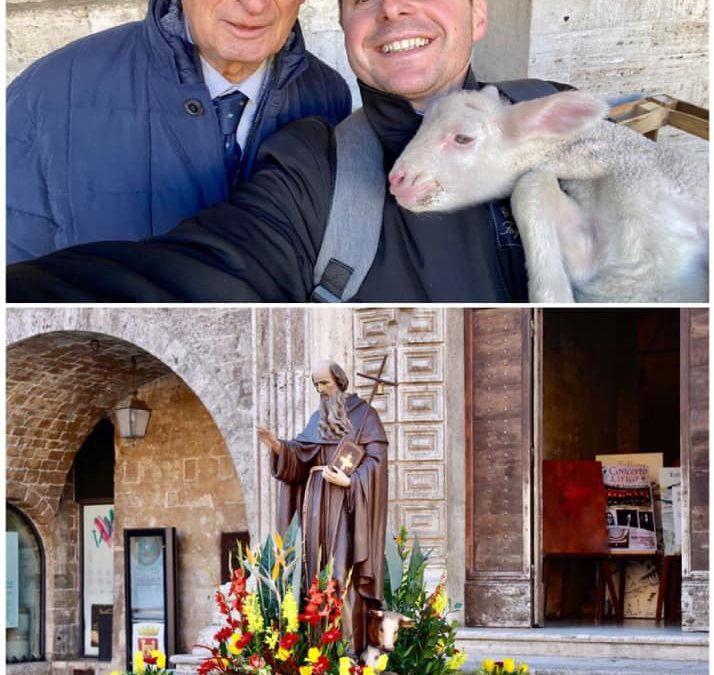 Buona Festa di Sant'Antonio Abate, protettore degli animali!